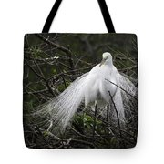 Great Egret In Tree Tote Bag
