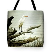 Great Egret On A Fallen Tree Tote Bag by Joan McCool