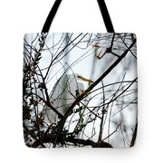 Great Egret Roosting In Winter Tote Bag