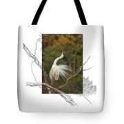Great Egret - Stretch Tote Bag