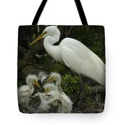 Great Egret With Young Tote Bag