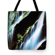Great Fall Tote Bag