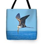 Great Frigate Bird Tote Bag