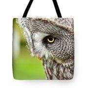 Great Gray Owl Close Up Tote Bag