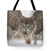 Great Gray Owl Pictures 634 Tote Bag