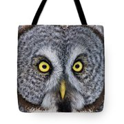 Great Gray Owl Pictures 680 Tote Bag