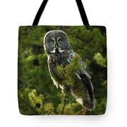 Great Grey Owl On The Hunt Tote Bag