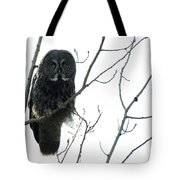 Great Grey Owl On The Lookout Tote Bag