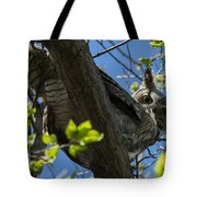 Great Horned Owl 5 Tote Bag