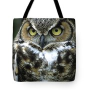 Great Horned Owl At Rest Tote Bag