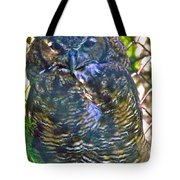 Great Horned Owl In Salmonier Nature Park-nl Tote Bag