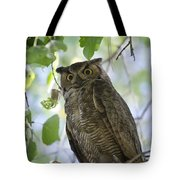 Great Horned Owl On A Branch  Tote Bag