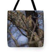 Great Horned Owl On Watch Tote Bag