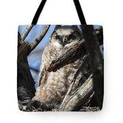 Great Horned Owlet Finishes Lunch Tote Bag