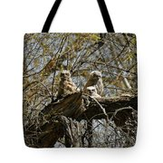 Great Horned Owlets Photo Tote Bag
