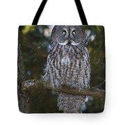Great Owl Eyes Tote Bag