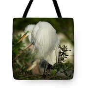 Great Egret Takes A Stance Tote Bag