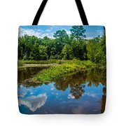 Great Reflections Tote Bag