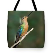 Great Sapphirewing Tote Bag