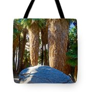 Great Sliding Rock In Lower Palm Canyon In Indian Canyons Near Palm Springs-california Tote Bag