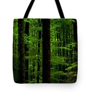 Great Smoky Mountains Forest Tote Bag