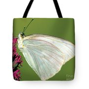 Great Southern White Butterfly Tote Bag