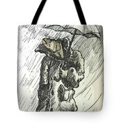 Great Weather For A Walk Two Tote Bag