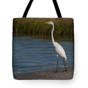 Great White 184 Tote Bag