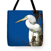 Great White Curves Tote Bag
