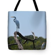 Great White Egret And Friend Tote Bag
