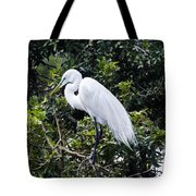 Great White Egret Building A Nest Viii Tote Bag