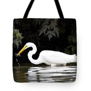 Great White Egret Eating Fish 2 Tote Bag