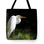 Great White Egret In The Tree Tote Bag
