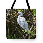 Great White Egret In The Wild Tote Bag