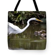 Great White Egret Looking For Fish 1 Tote Bag