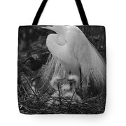 Great White Egret Mom And Chicks In Black Ans White Tote Bag