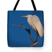 Great White Egret On A Snag Tote Bag