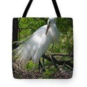 Great White Egret Primping Tote Bag