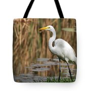 Great White Egret Taking A Stroll Tote Bag