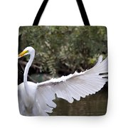 Great White Egret Wingspan1 Tote Bag