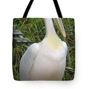 Great White Pelican Tote Bag