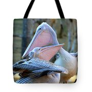 Great White Pelicans Tote Bag