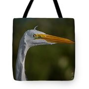 Great White Portrait 2 Tote Bag