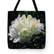 Great White Rhododendron Tote Bag