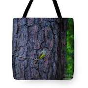 Greater Crested Flycatcher Tote Bag