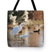 Greater Egret Lesser Egret And Coot Tote Bag