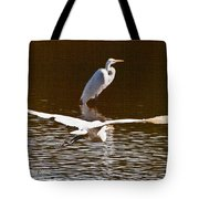 Greater Egrets Meeting Up Tote Bag
