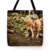 Greater Flamingo Tote Bag