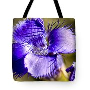 Greater Fringed Gentian Tote Bag