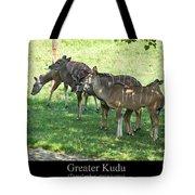Greater Kudu Tote Bag
